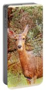 Deer In Forest Portable Battery Charger