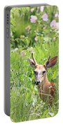 Deer In Magee Marsh Portable Battery Charger