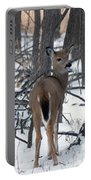 Deer In The Grove Portable Battery Charger
