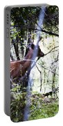 Deer Looking For Food Portable Battery Charger