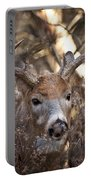 Deer Pictures 449 Portable Battery Charger