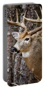 Deer Pictures 508 Portable Battery Charger