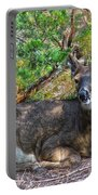 Deer Relaxing Portable Battery Charger