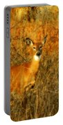 Deer Spotted In A Golden Glowing Field  Portable Battery Charger