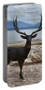 Deer Statute On Antelope Island  Portable Battery Charger