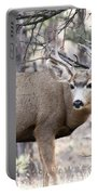 Deer Watch Portable Battery Charger