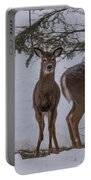 Deer With A Leg Up Portable Battery Charger