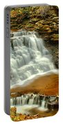 Delaware Falls - Ricketts Glen Portable Battery Charger