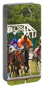 Delaware Park Portable Battery Charger