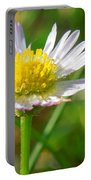Delicate Daisy In The Wild Portable Battery Charger