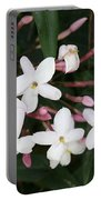 Delicate White Jasmine Blossom With Green Background  Portable Battery Charger