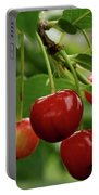 Delicious Cherries Portable Battery Charger by Sandy Keeton