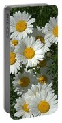 Delightful Daisies Portable Battery Charger