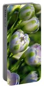 Delphinium Buds Blooming Portable Battery Charger