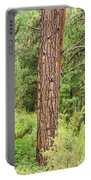 Dense Forest View Portable Battery Charger