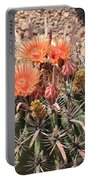 Desert Beauty Portable Battery Charger