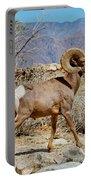 Desert Bighorn Sheep Ram At Borrego Portable Battery Charger