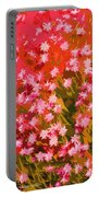 Desert Broom Abstract  Portable Battery Charger