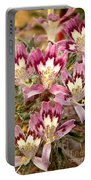 Desert Calico Wildflowers Portable Battery Charger