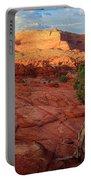 Desert Juniper Portable Battery Charger by Inge Johnsson