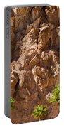 Desert Mountain Portable Battery Charger
