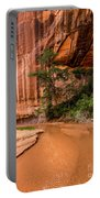 Desert Oasis - Coyote Gulch - Utah Portable Battery Charger