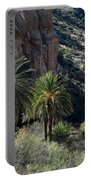 Desert Palms Portable Battery Charger
