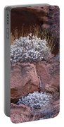 Desert Plant Life Portable Battery Charger