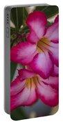 Desert Roses Portable Battery Charger