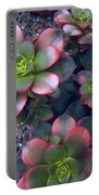 Desert Succulents Portable Battery Charger