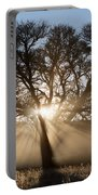 Desert Tree Portable Battery Charger