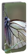 Detail Of A Butterfly In Alto Tajo Portable Battery Charger