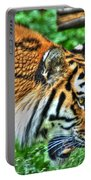 Determination In The Tigers Stare Portable Battery Charger