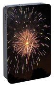 Detroit Area Fireworks -10 Portable Battery Charger