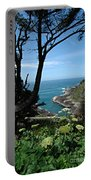 Devil's Churn Oregon Coastline Portable Battery Charger