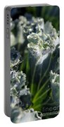 Dew Drops On Silvery Frill Portable Battery Charger