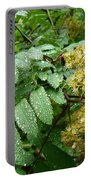 Dew Go On Portable Battery Charger