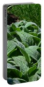 Dew Kissed Foliage Portable Battery Charger