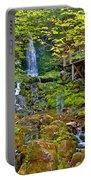 Dickson Falls In Fundy Np-nb Portable Battery Charger