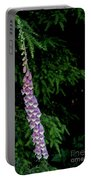 Digitalis Portable Battery Charger