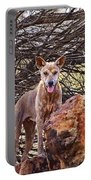 Dingo In The Wild V5 Portable Battery Charger
