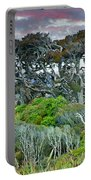 Dinosaur Trees Portable Battery Charger