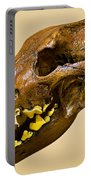 Dire Wolf Skull Fossil Portable Battery Charger