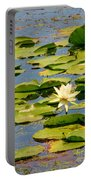 Dirty Monet Portable Battery Charger