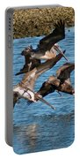 Diving Pelicans Portable Battery Charger
