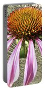 Divinity Gold - Echinacea Portable Battery Charger