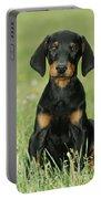 Doberman Pinscher Puppy Portable Battery Charger