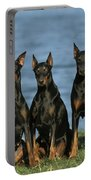 Doberman Pinschers Portable Battery Charger