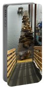 Dock Sea Lions Astoria Or 1 A Portable Battery Charger