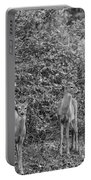 Doe A Deer Bw Portable Battery Charger